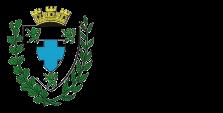 Toufflers 2020 Logo